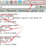 Have You Ever Heard About Crawl Delay In robots.txt?
